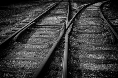 The Tracks_MG_2981