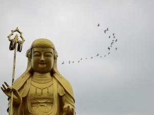 Buddha with birds_Ryan Bodenstein_Flickr_16717343026_58a673baba_c